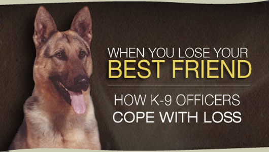 Why did you lose your best friend?